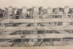 Zonder titel (koeien), 2020, 23 x 65 cm., balpen op katoen