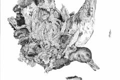 Eend (detail)
